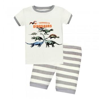 """Детская пижама для мальчика из 2 предметов """"Большие динозавры - 2"""""""